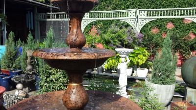 Local Business Spotlight American Aquatic Gardens Neworleans Me