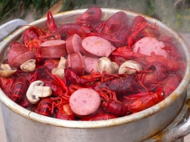 The History of the Crawfish in Louisiana