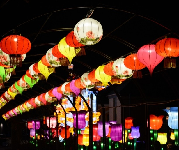 City Park Dazzles With China Lights